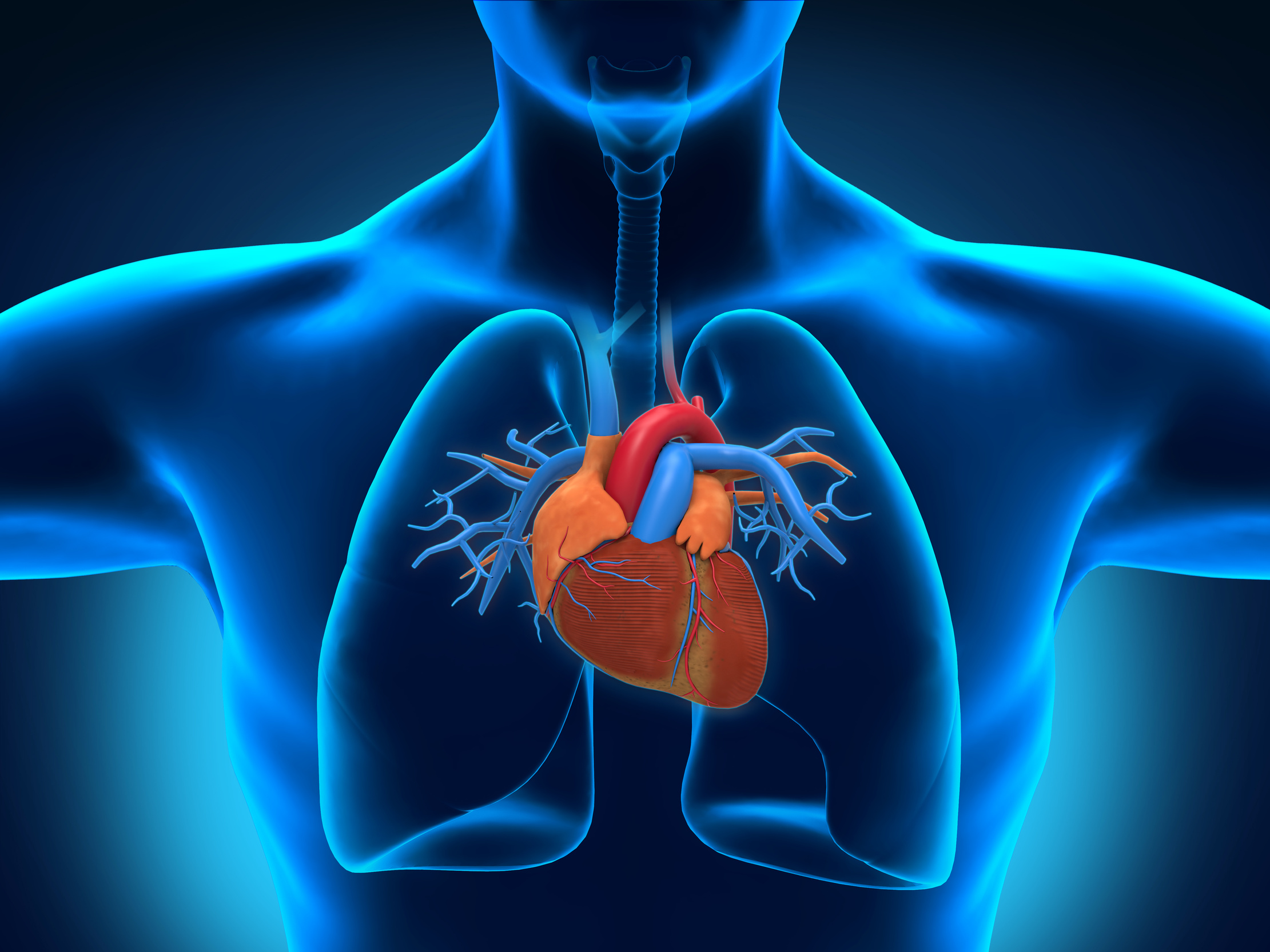 Cardiology course in Assam by IGNOU
